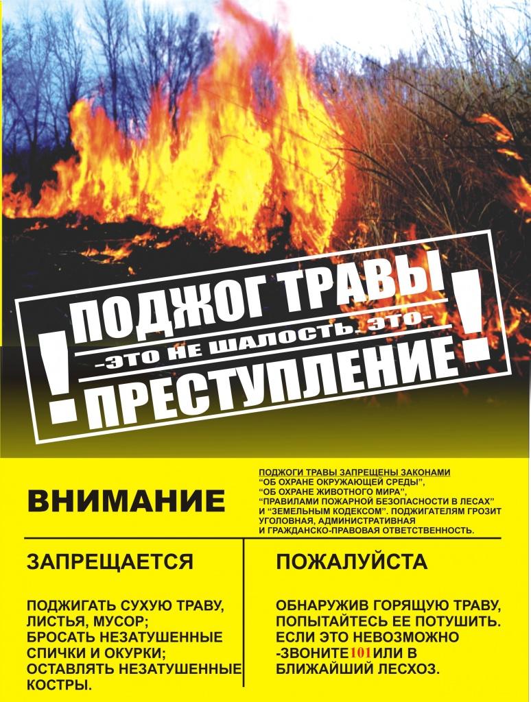 http://ds-barbino.ucoz.ru/pojar/trava.jpg